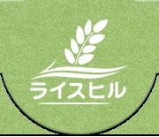 コシヒカリ玄米 美味しい健康お米 おいしいお米のお取り寄せ通販ライスヒル